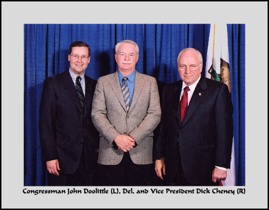 vice president, dick cheney, del albright, power of politics